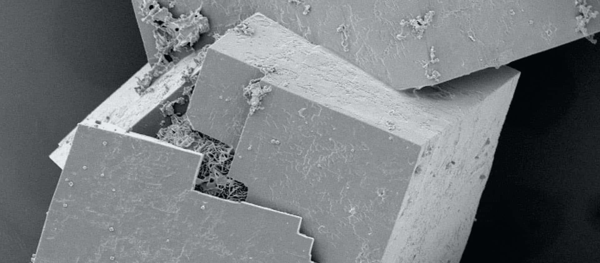 Nanotechnology Development